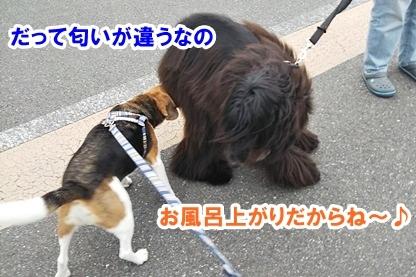 宮本さん 4