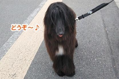 宮本さん 7