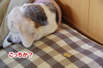 がんばれ 8