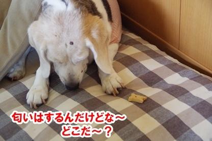 がんばれ 9