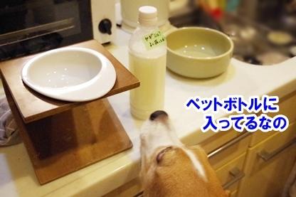 ヤギミルク 3