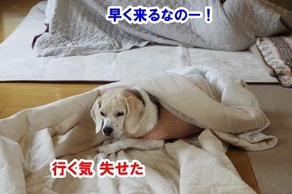 眠り姫 6