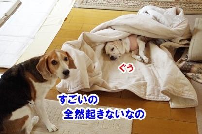 眠り姫 2