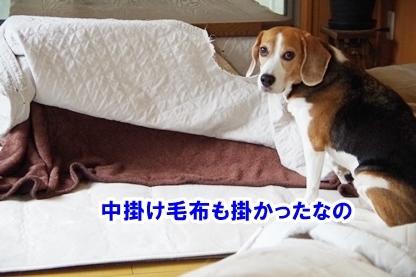 眠り姫 4