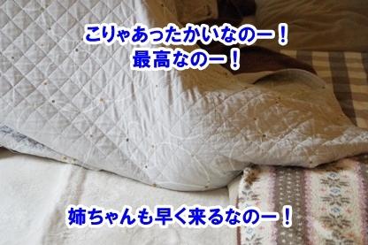 眠り姫 5
