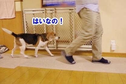 歩こう 2