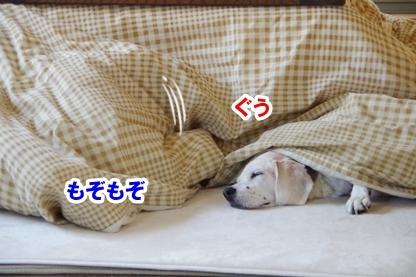 安眠のために 3
