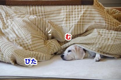 安眠のために 4