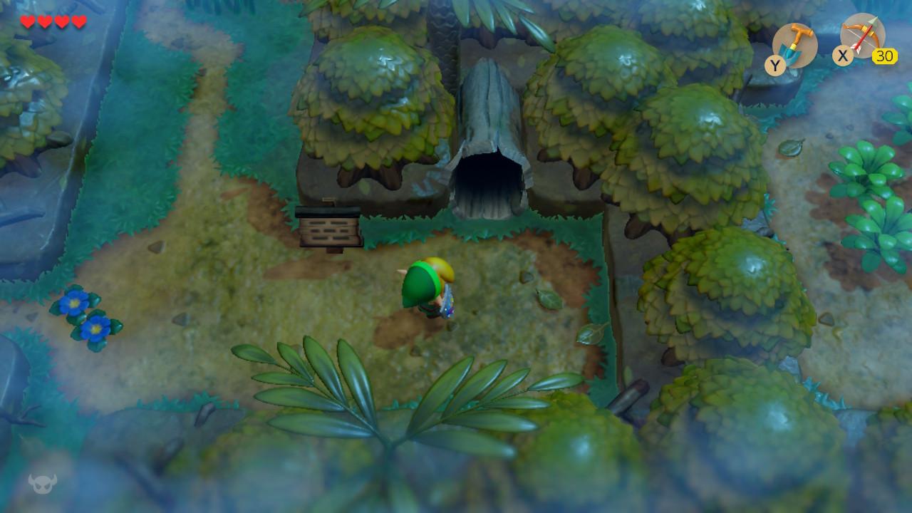 夢をみる島® ふしぎの森-1