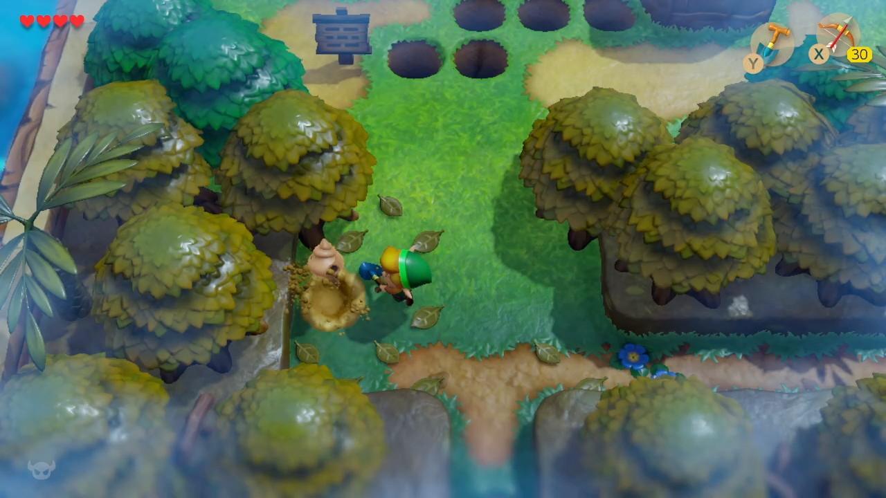 夢をみる島® ふしぎの森-5