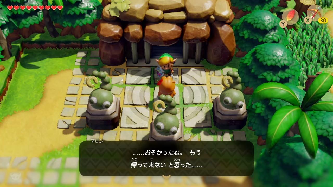 夢をみる島® どうぶつ村-4