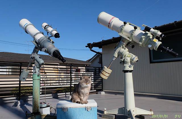 20200716 20170101チビと望遠鏡