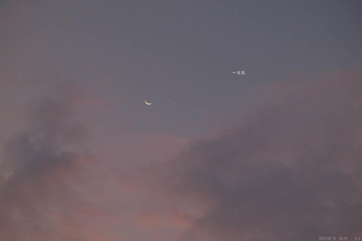 20200815-3月と金星