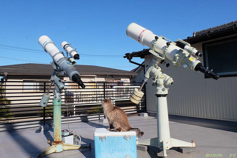 20170101チビと望遠鏡 DSCF1139atsm