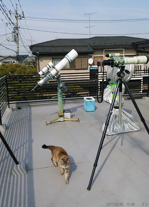 20170305 チビさんと望遠鏡