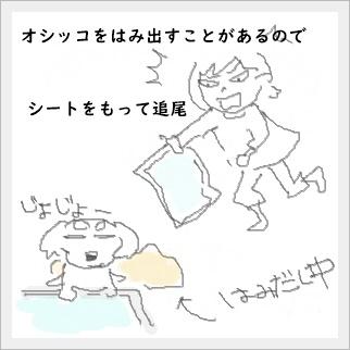 yoru6.jpg