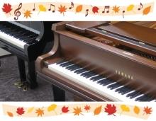 秋piano