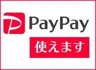 paypay_20201130181427869.jpg