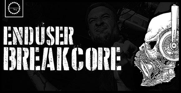 01-Enduser-Breakcore20201209.jpg