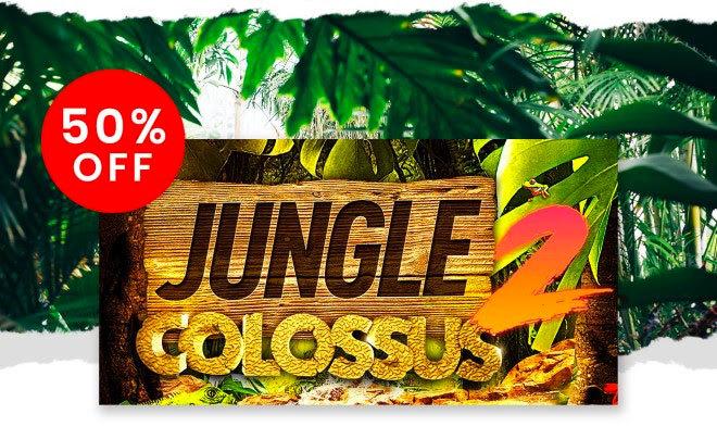 04-jungle20200910.jpg