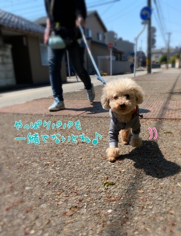fc2blog_20200425204509cc3.jpg
