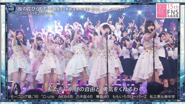 FNS (12)