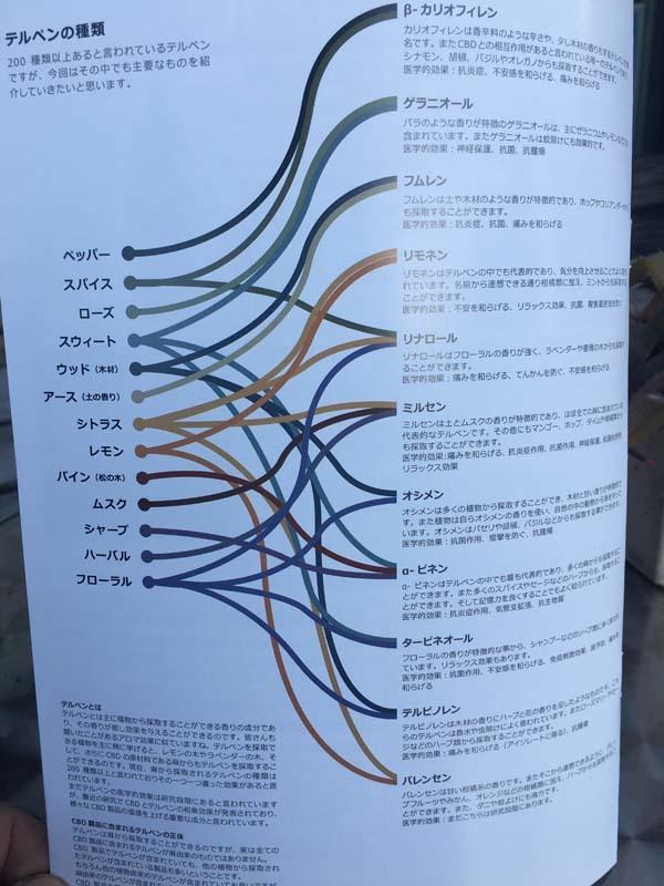 日本初のCBD専門情報誌『I AM CBD』創刊号!マニャーナでも配布中!