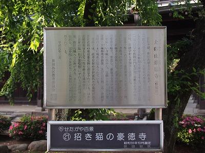 goutokuji17.jpg