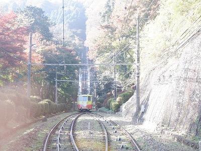 hachioji313.jpg