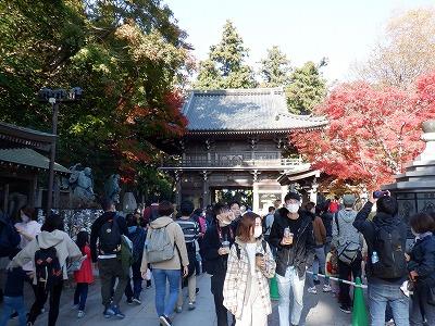 hachioji331.jpg
