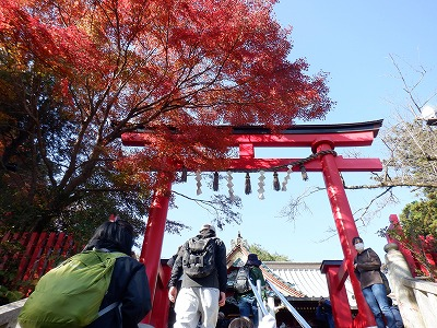hachioji339.jpg