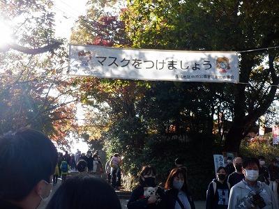 hachioji342.jpg