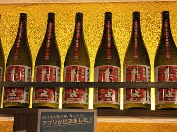 tachikawa-katsuo10.jpg