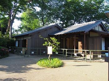wakabayashi11.jpg