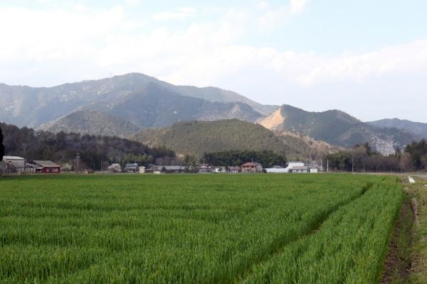 200419-2.jpg