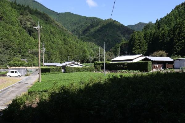 200620-2.jpg