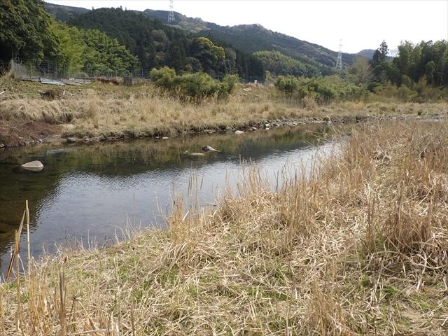 秡川 ほたるの里公園上流