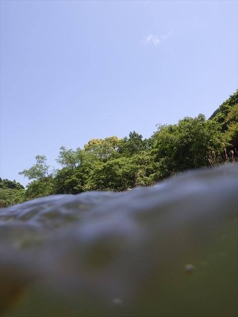 伊良原ダム下流域
