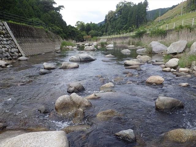 祓川 川の真ん中の石の上で釣り