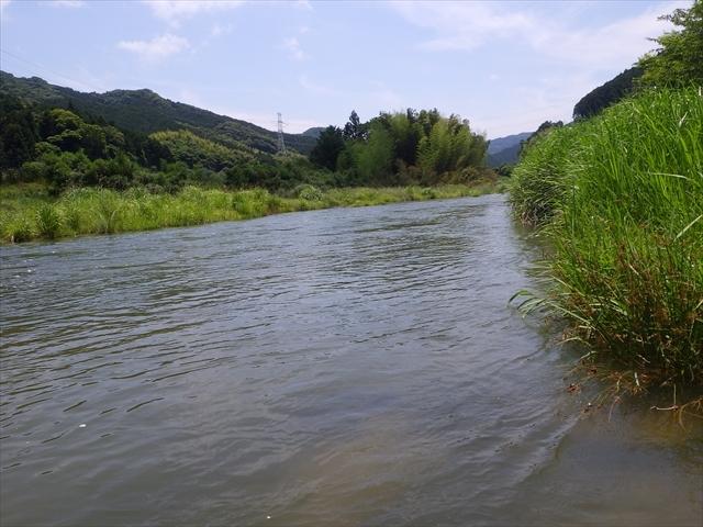 秡川ほたるの里公園上流