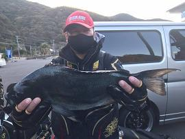 1月4日鶴見グレ53cm