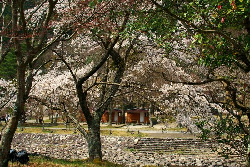 かもしか荘 (2)
