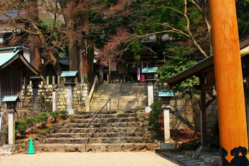 かもしか荘 (3)