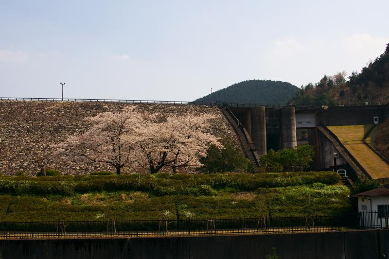 青土ダム (5)
