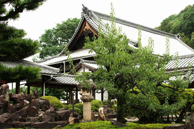 興聖寺 (2)