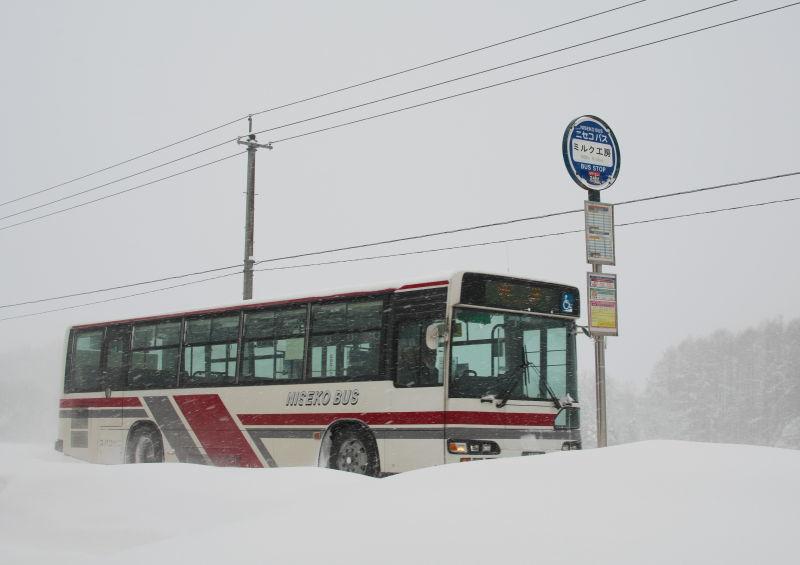 雪 (6)