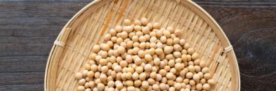 土壌菌に含まれる大豆イソフラボンのイメージA