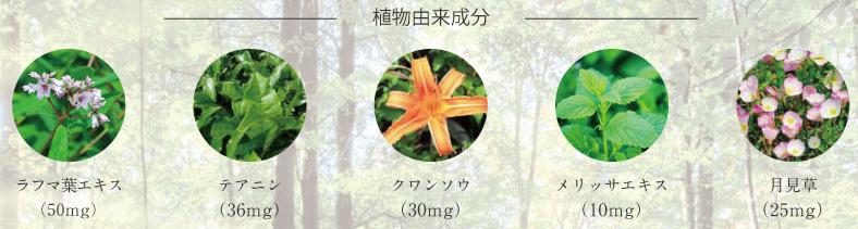 植物由来成分の画像