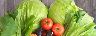 食物繊維を多く含む野菜のイメージA