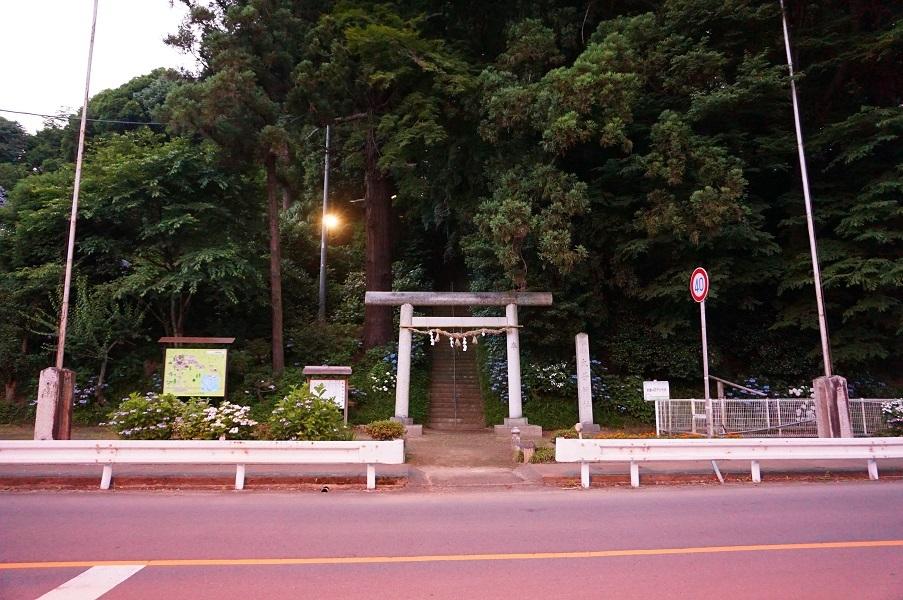 05 大井神社鳥居